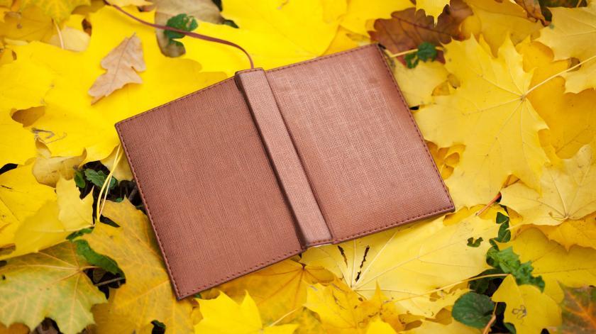 bog der ligger i efterårsløvfald