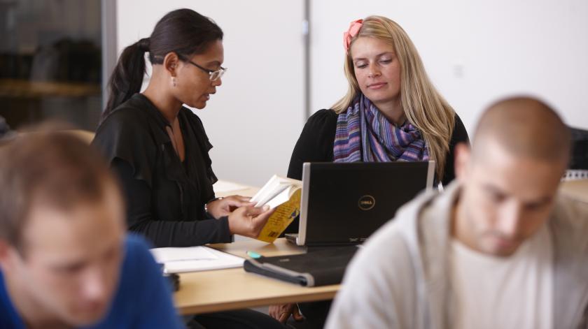 Studerende arbejder koncentreret