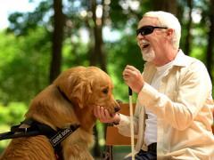 glad mand med sorte briller og førerhund